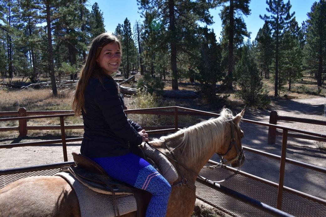 bryce_horse3.jpg