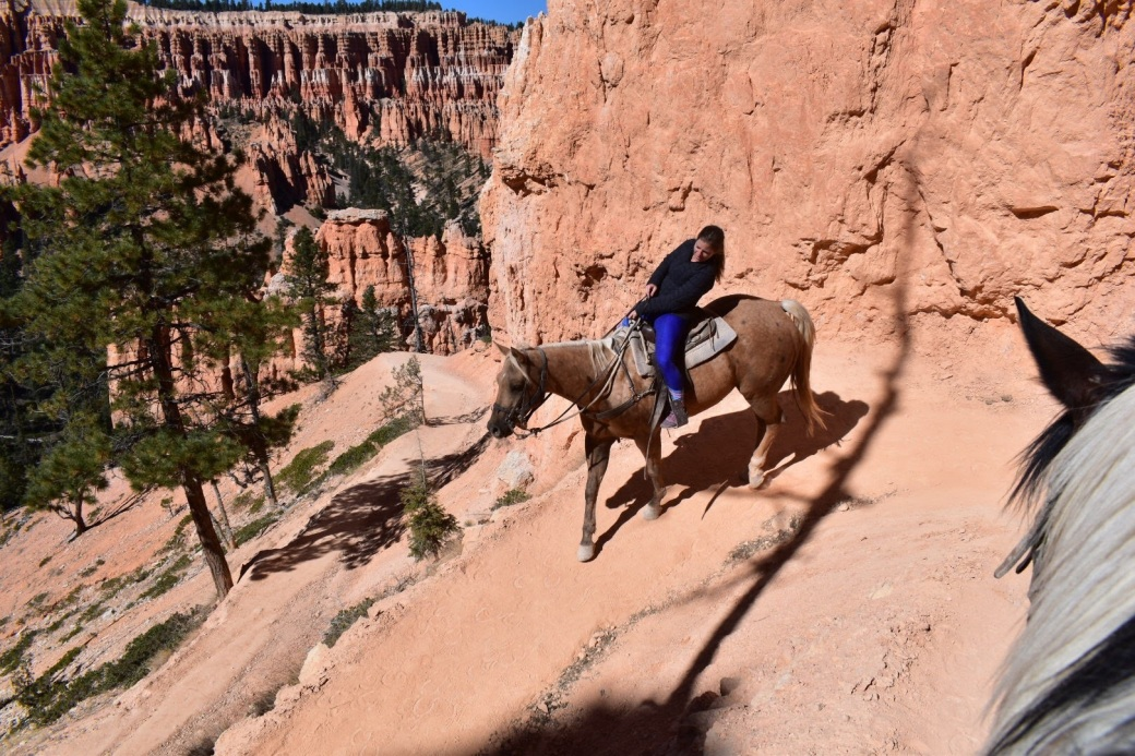 bryce_horse4.jpg