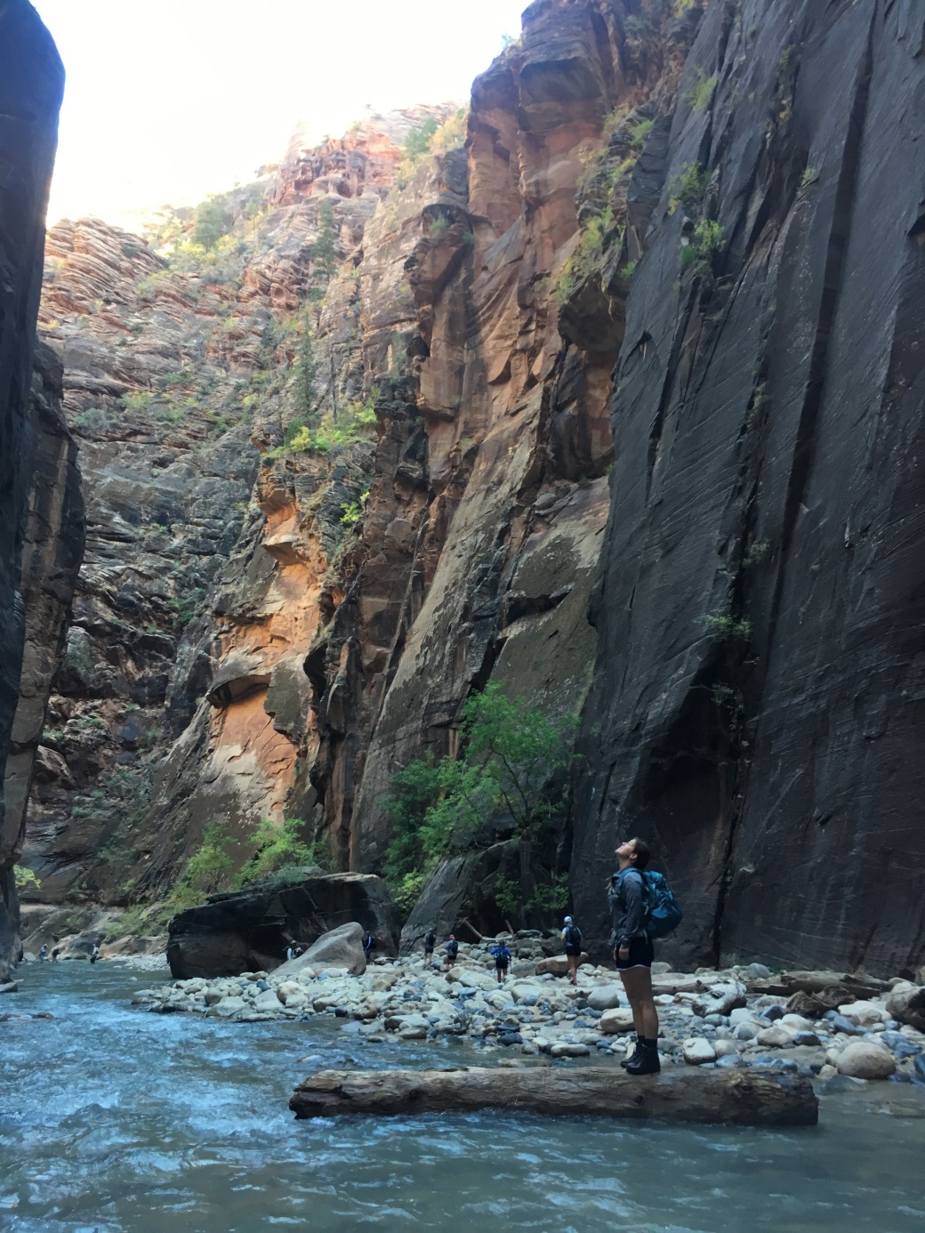 narrows2